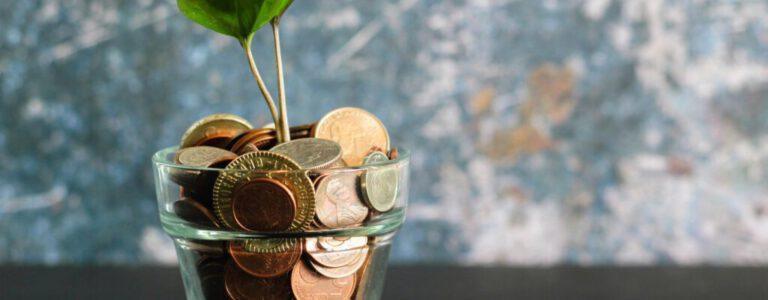 Duidelijkere prijzen voor truffel sessies