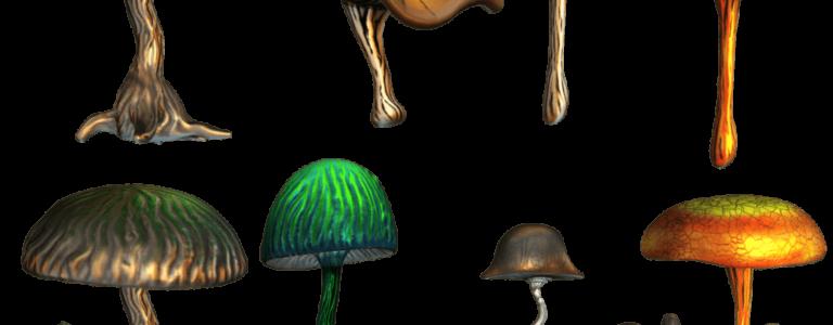 De helende effecten van (magische) paddenstoelen