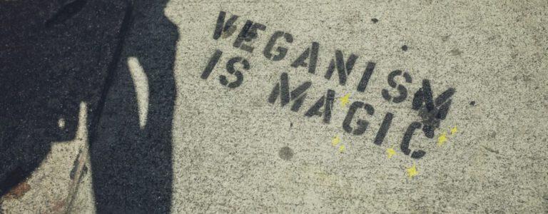 De depressieve veganist