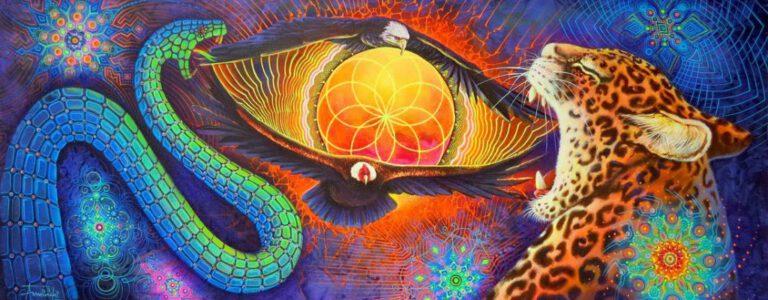 Ayahuasca, psilohuasca, psiloflora of truffel ceremonie?