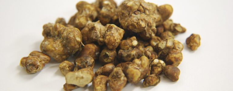 Hoge dosering truffel sessie